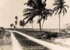 Photo credit: Florida Keys--Public Libraries / Foter / CC BY