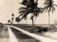 Photo credit: Florida Keys--Public Libraries / Foter / CC BY
